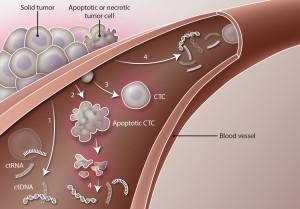 Biopsia Liquida